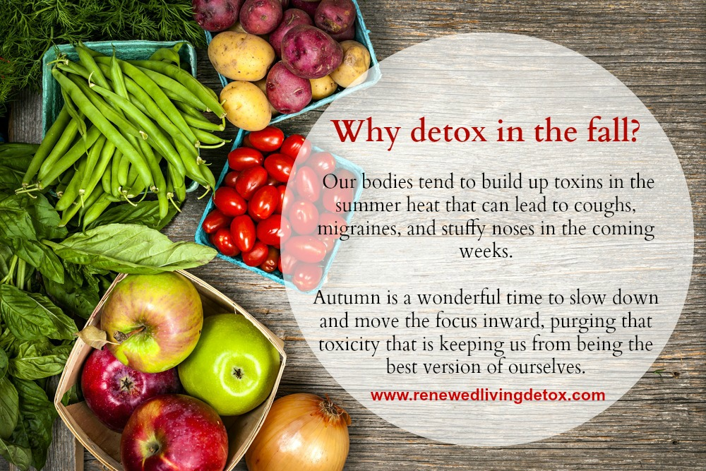 Why Detox in the Fall?